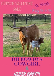 DH ROWDYS COWGIRL