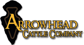 Arrowhead Cattle Company